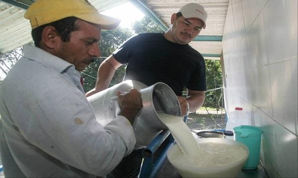 Cavilac espera que en treinta días aumente el abastecimiento de leche en el mercado