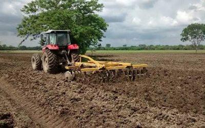 Fedeagro denuncia que inseguridad afecta producción de hortalizas