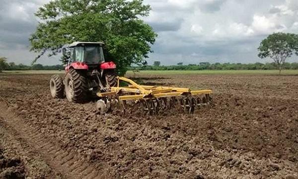 Se necesitan más de 2 millones de litros de gasoil para ciclo de siembra de arroz en verano