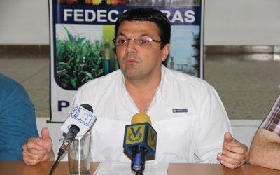 Fedecámaras Portuguesa lamenta que la OIT no constatara ataques a la propiedad