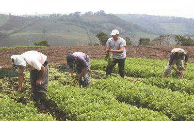 Cavedrepa presentó propuesta al Ejecutivo para potenciar sector agropecuario