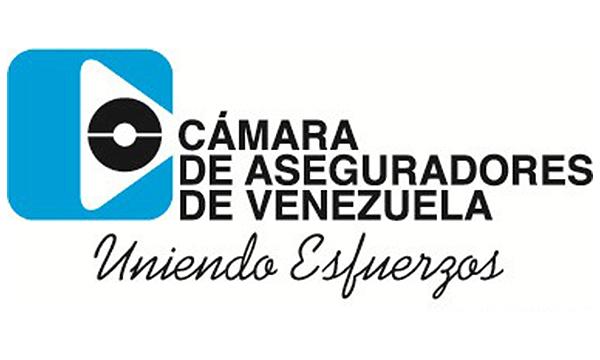 Cámara de Aseguradores de Venezuela eligió Junta Directiva para el periodo 2019-2020