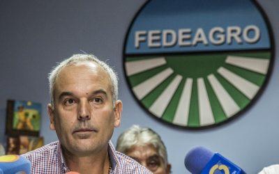 Fedeagro: producción nacional solo abastece 25% del consumo nacional
