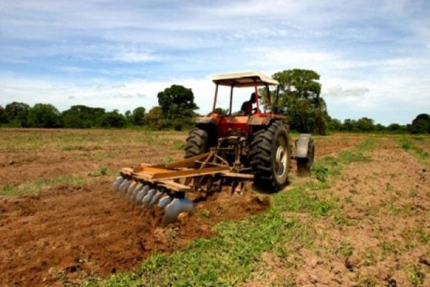 Fedeagro: Se pierde año agrícola 2019 por inacción de las autoridades