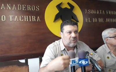 Asogata advierte que producción de carne y leche en Táchira cayó 70%