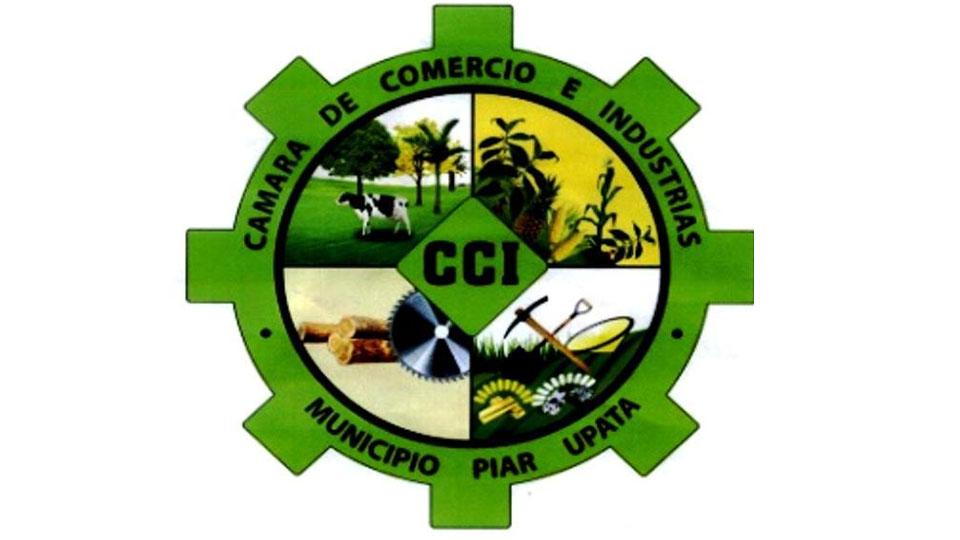 CCI continúa su historia gremial y comercial con nueva directiva