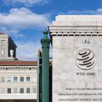 OMC en tiempos de pandemia