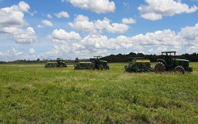 Portuguesa  La actividad agrícola ha evolucionado dentro de las circunstancias