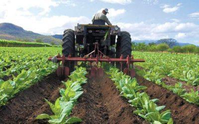 Sector agropecuario está al borde del colapso por escasez de gasoil