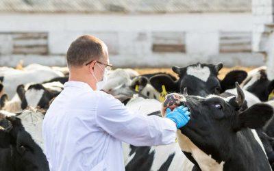 AVISA respalda propuesta de vacunación anti COVID-19 de Fedecámaras