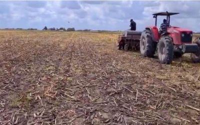 Quero: En 2021 se logró rescatar un 20% las áreas de siembra